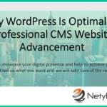 Why WordPress Is Optimal for Professional CMS Website Advancement