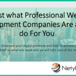 Just what Professional Web Development Companies Are able to do For You